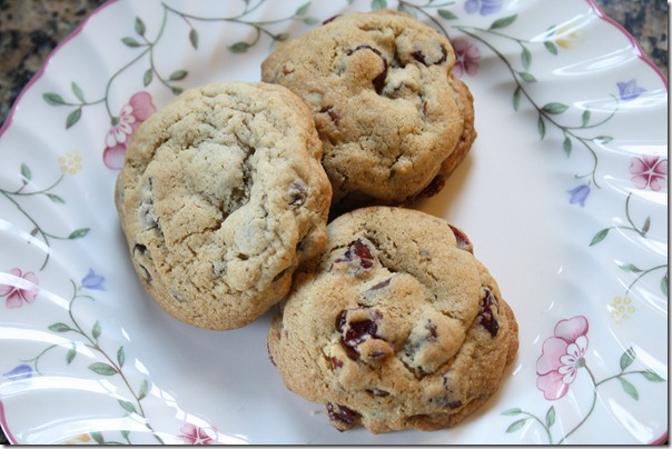 chocolate chip cookie 10-2010