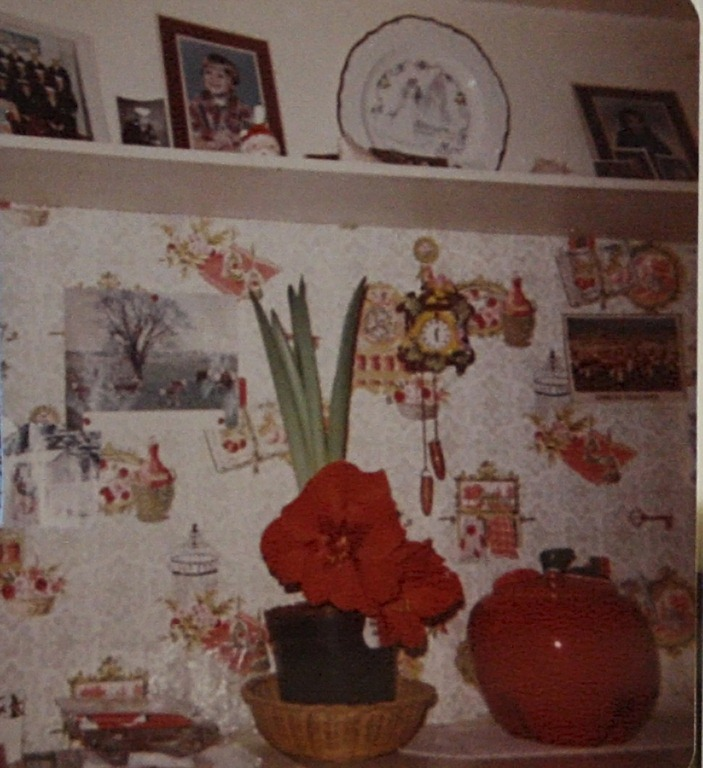 Granny\'s Kitchen - minding my nest