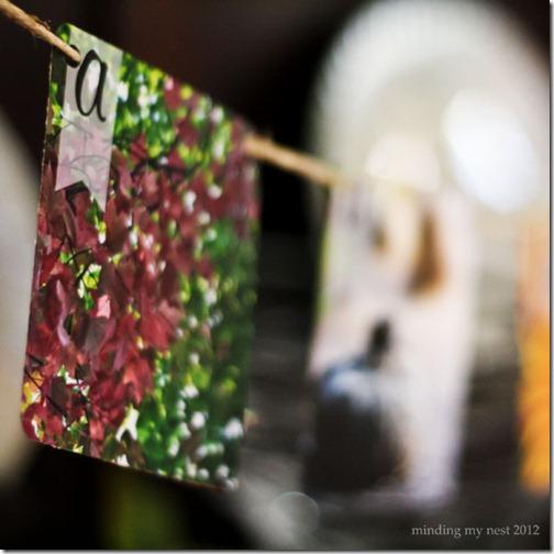 52 Weeks of Pinspiration {Week 42}–Fall Photo Banner