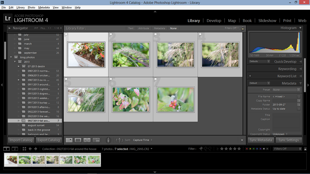 my lightroom workflow part 4–exporting photos