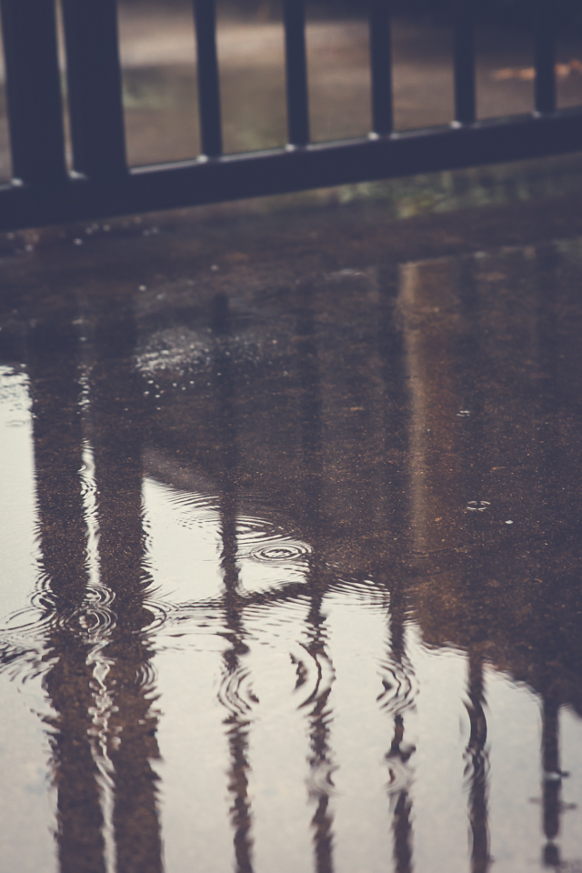 IMG_9136_blog