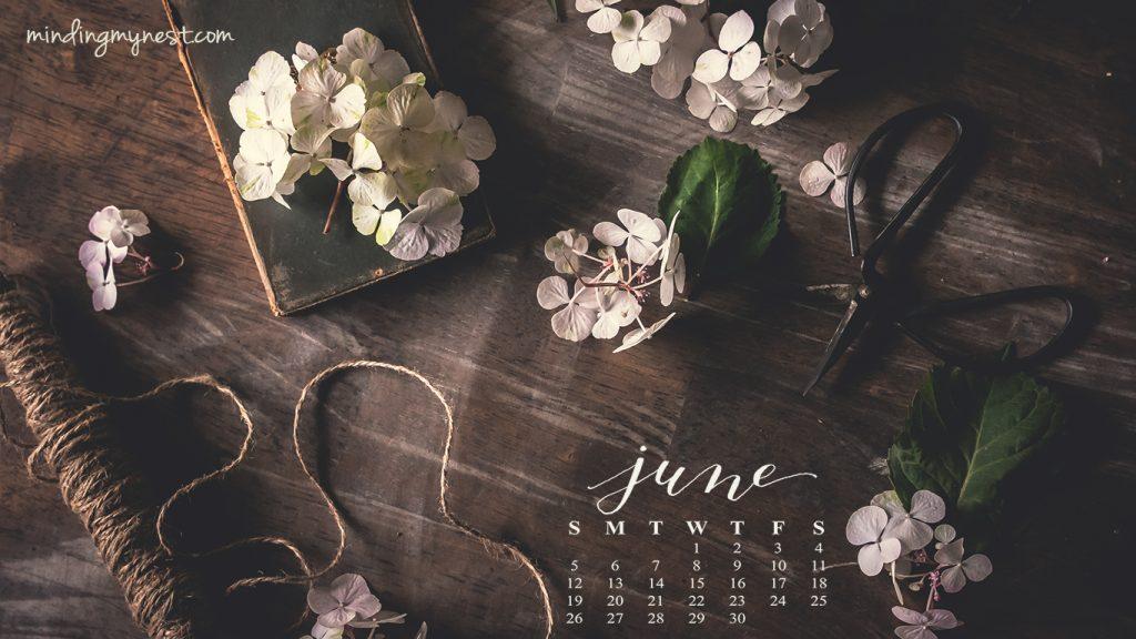 june-2016-desktop-calendar_1366x768