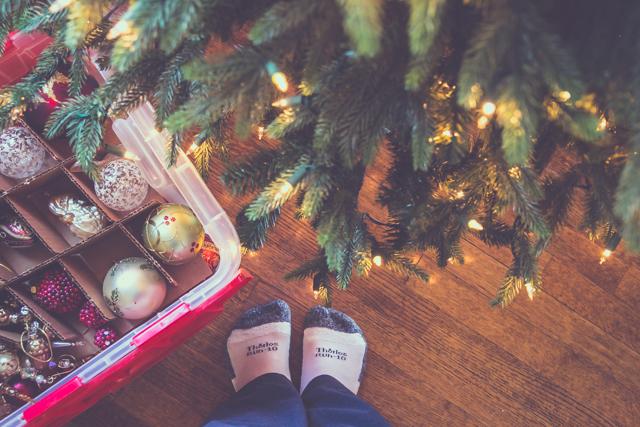 new tree tradition_01_blog