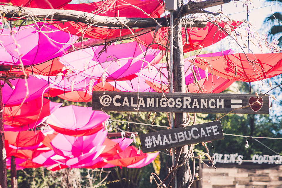 mindingmynest_california trip_037