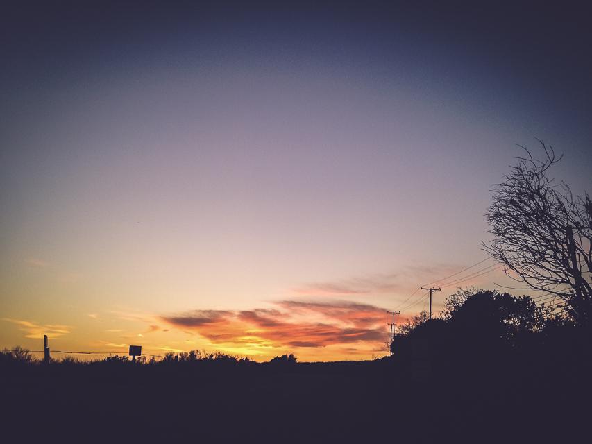 mindingmynest_california trip_043