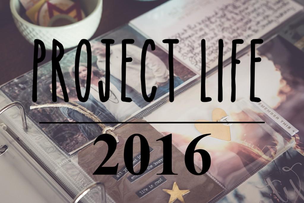 mindingmynest_project life 2016-30