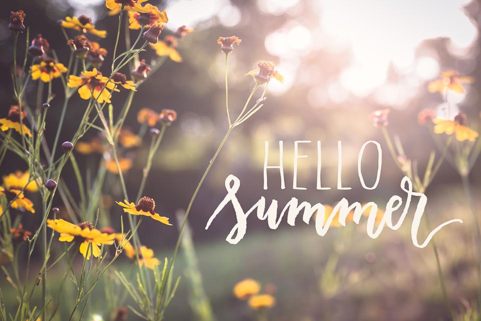 mindingmynest_hello summer_2016