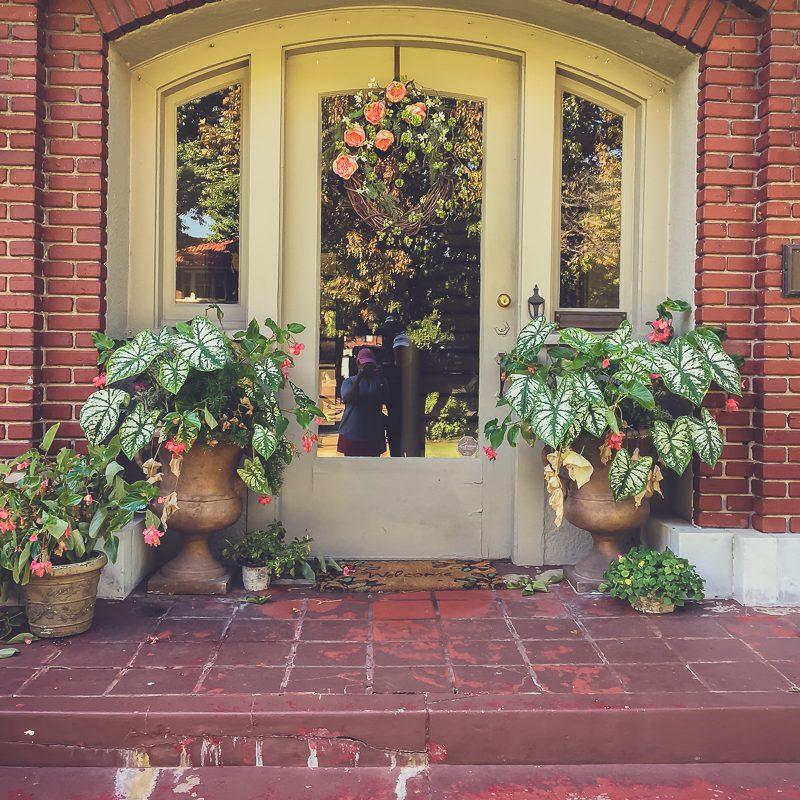 Restraint and the Autumn Garden
