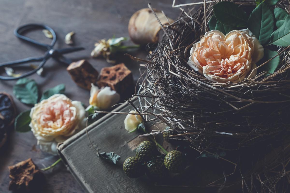 from an empty-nest to an abundant life