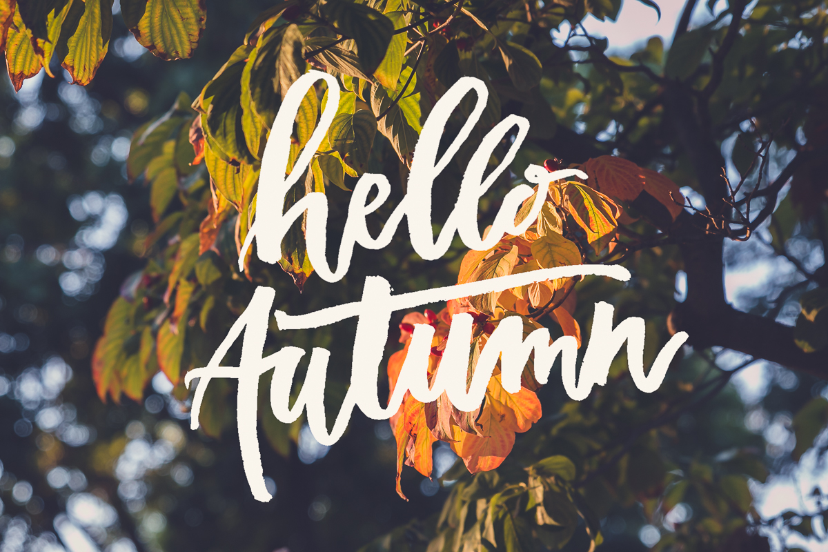hello autumn word art