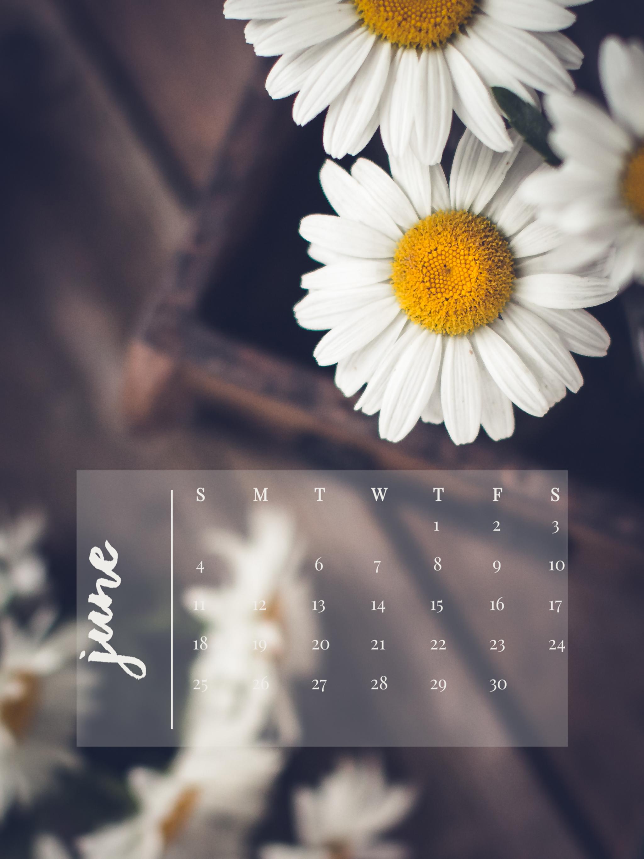 June 2017 Device Calendar