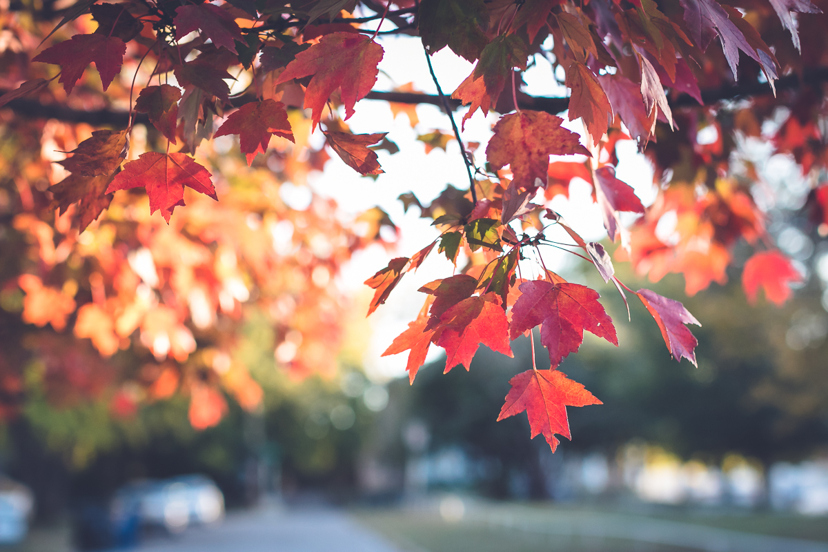 10 Best Things About October