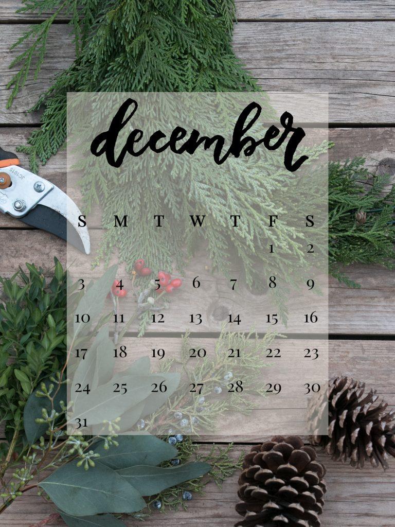 December 2017 Device Calendar