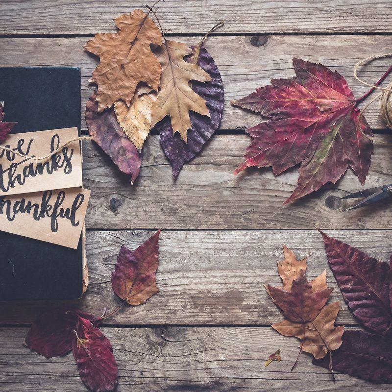 'Tis the Season to Be Grateful
