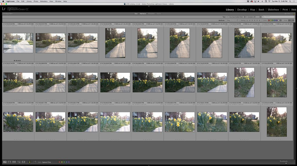 Culling Photos in Lightroom