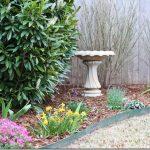 Rain Gauges, Birdbaths, and Other Matters