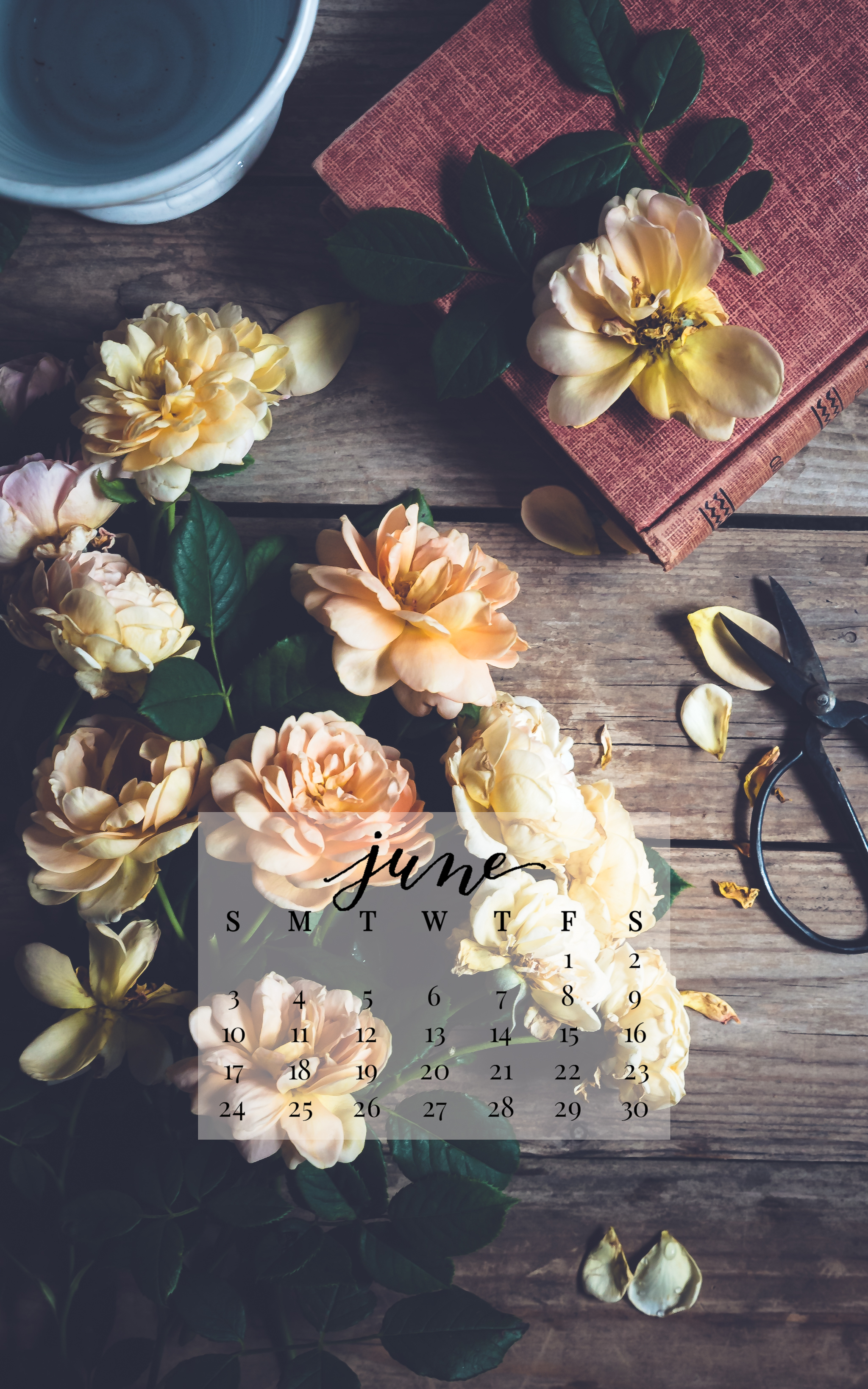 June 2018 Device Calendar