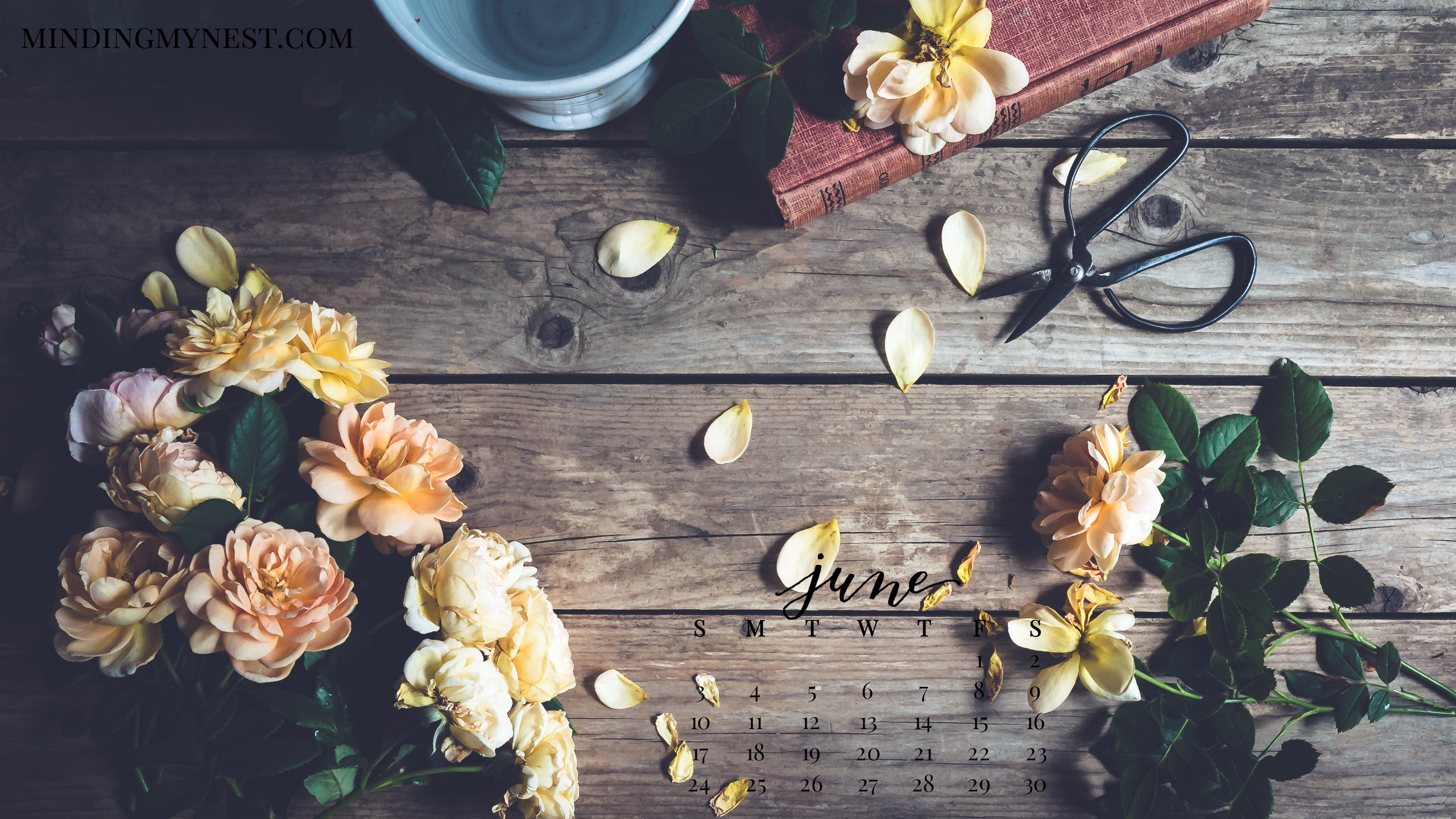 June 2018 Desktop Calendar