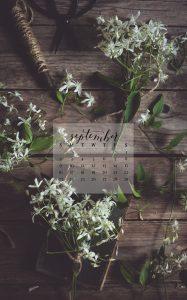 September 2018 Device Calendar