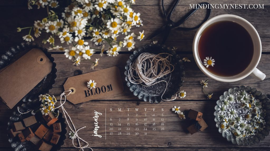January 2019 Desktop Calendar