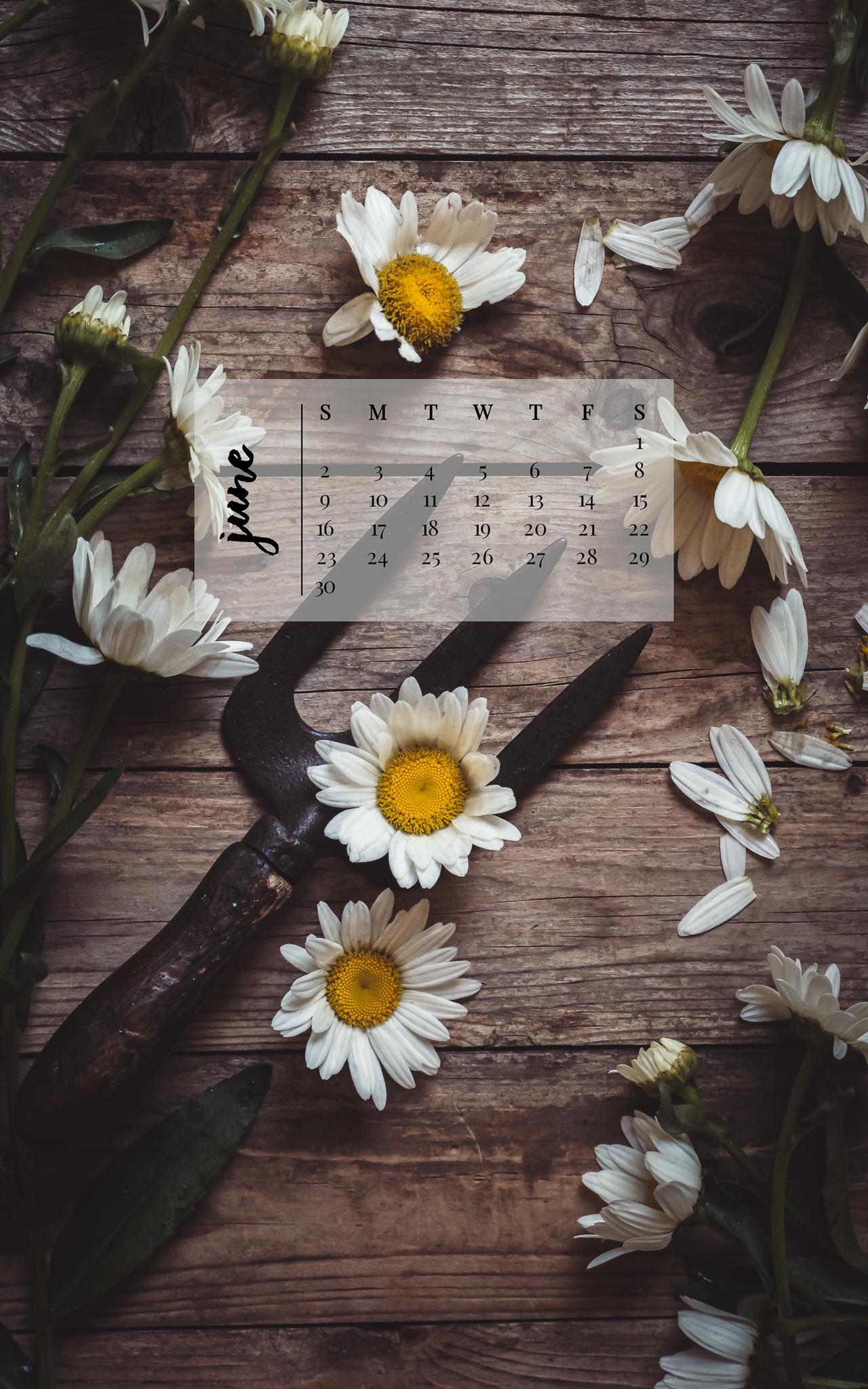 June 2019 Device Calendar