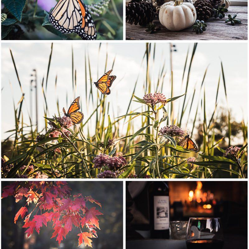 October Stories