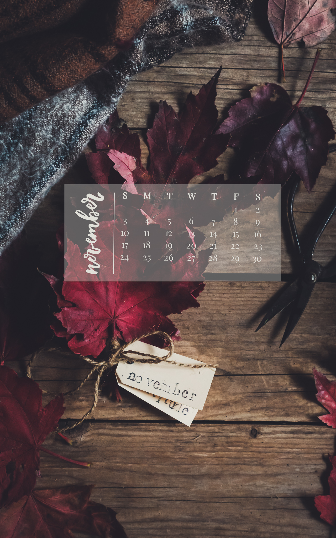November 2019 Device Calendar
