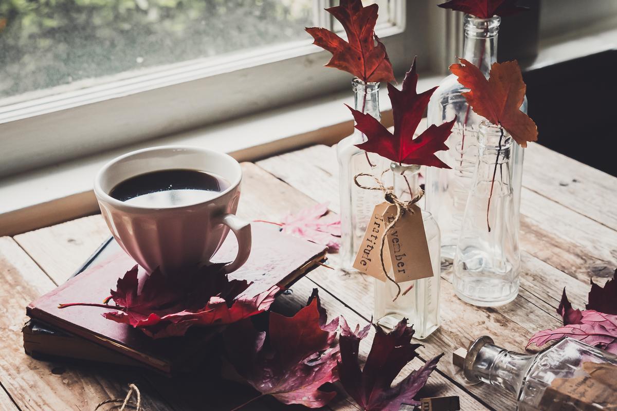 November Gratitude 2019