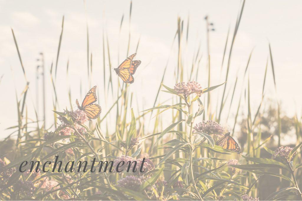 Everyday Magic_Enchantment