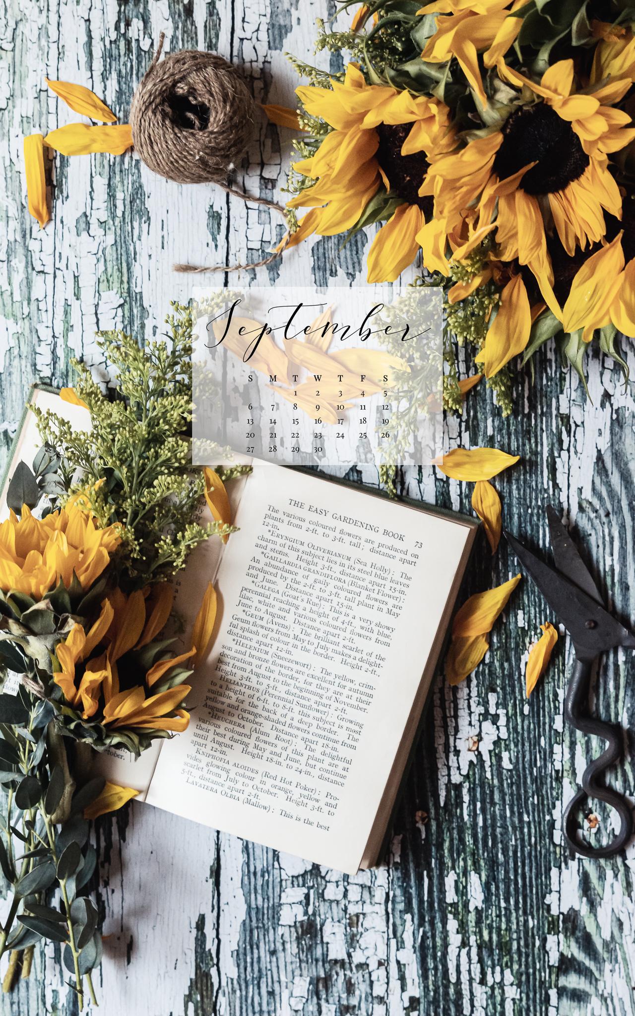 September 2020 Device Calendar